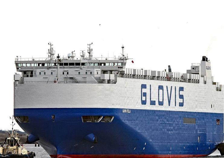 glovis-stella